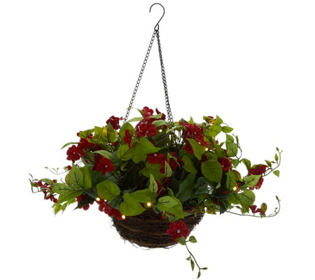 Bethlehem Lights Indoor/Outdoor Impatiens Hanging Basket
