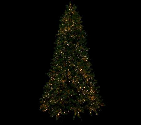 purchase cheap cb09b 51ca6 QVC) Santa's Best Starry Light Microlight Tree w/Color Flip ...