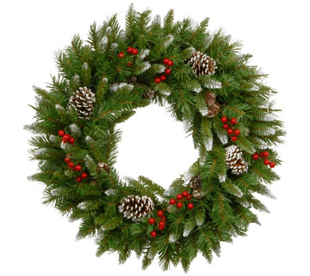 National Tree Company 24 Frosted Berry Wreath