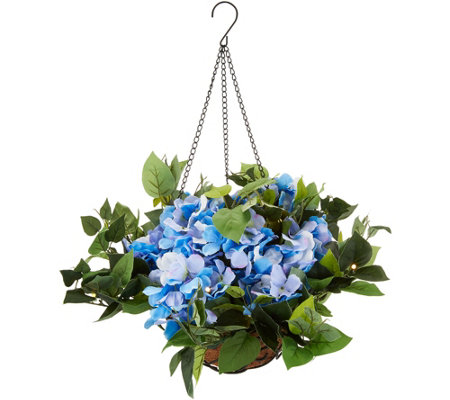 Bethlehem Lights Indoor/Outdoor Hydrangea Hanging Basket