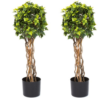 Pure Garden English Ivy Single Ball Topiary Trees, Set of Two