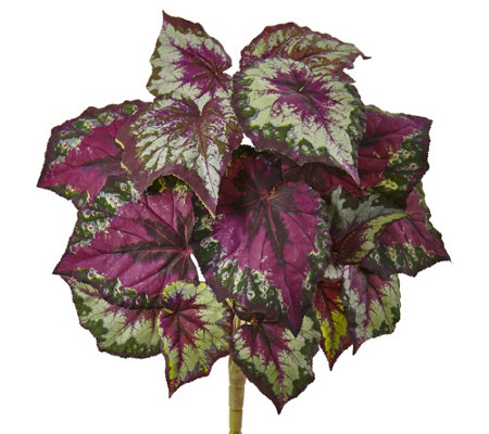 Wax Begonia Bush Set Of 6 By Nearly Natural