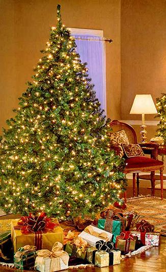 Bethlehem Lights Pre-lit Christmas Tree — QVC.com