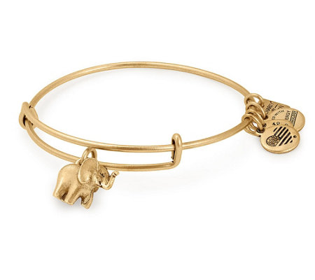 Alex and Ani Elephant Bangle -Friends of Jaclyn Foundation