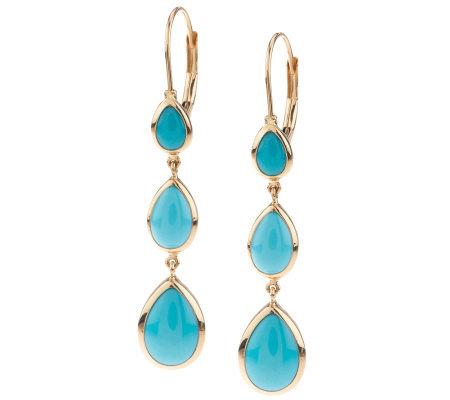 Sleeping Beauty Turquoise Linear Design Lever Back Earrings 14k
