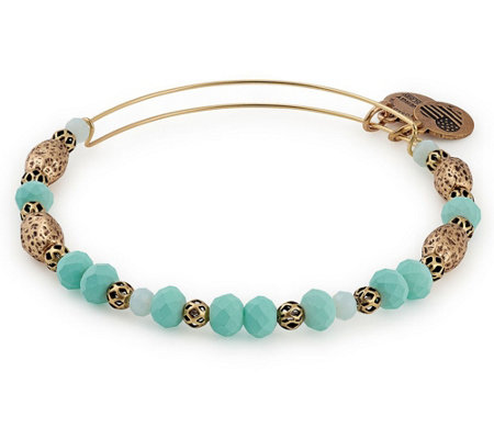 Alex and Ani Valley Beaded Bangle