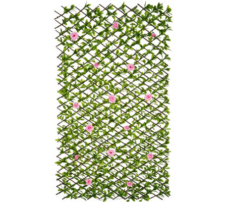 """As Is"" Barbara King Expandable Hedge with Roses"