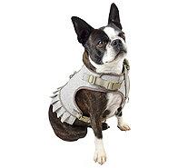 m59407.001?$aemprodcarousel$ martha stewart set of 6 decorative dog collar accessories page 1