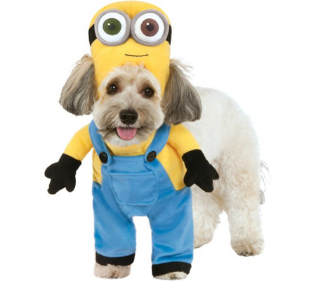 Rubie's Minion Bob Pet Costume-Small