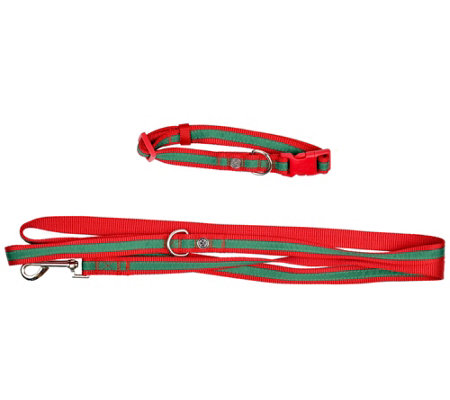 Martha Stewart Holiday Red and Green Collar and Leash Set