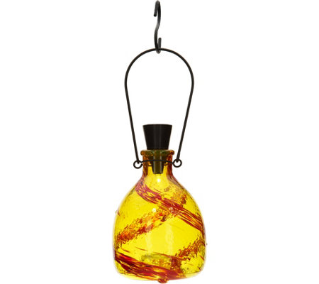 Painted Glass Solar Wasp Catcher by Evergreen