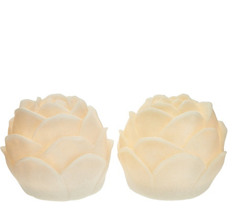 Barbara King Set of 2 Illuminated Sandstone Flower Blossoms