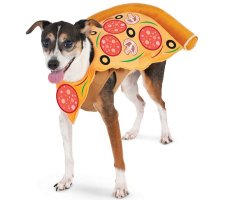Rubie's Pizza Slice Pet Costume - Medium