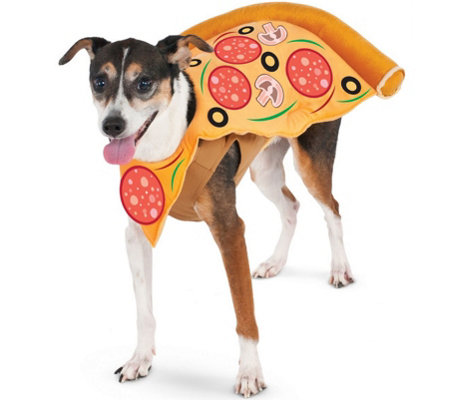 Rubie's Pizza Slice Pet Costume - Large
