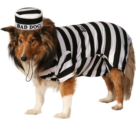 Rubie's Prisoner Pet Costume - Large