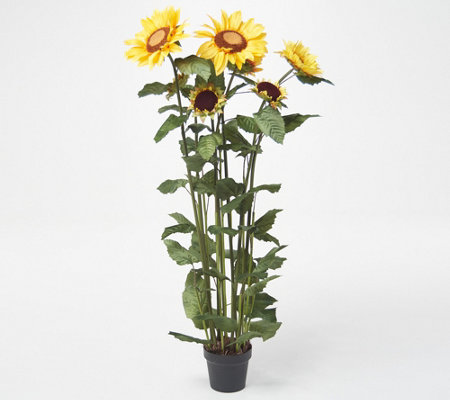 Indoor Outdoor 51 Artificial Sunflower Potted Plant Qvc Com