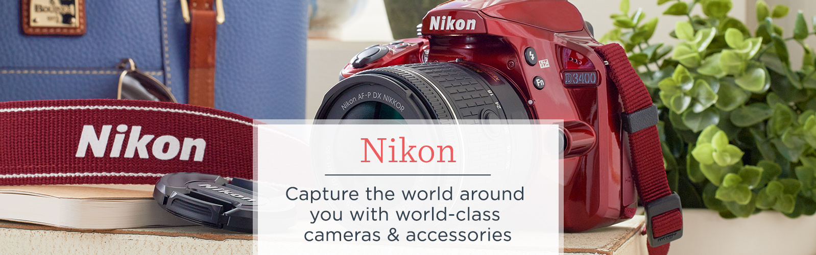 Nikon — Capture the world around you with world-class cameras & accessories