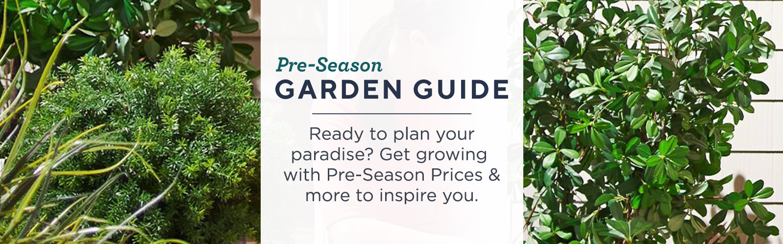 Pre-Season Garden Guide — Ready to plan your paradise? Get growing with Pre-Season Prices & more to inspire you.