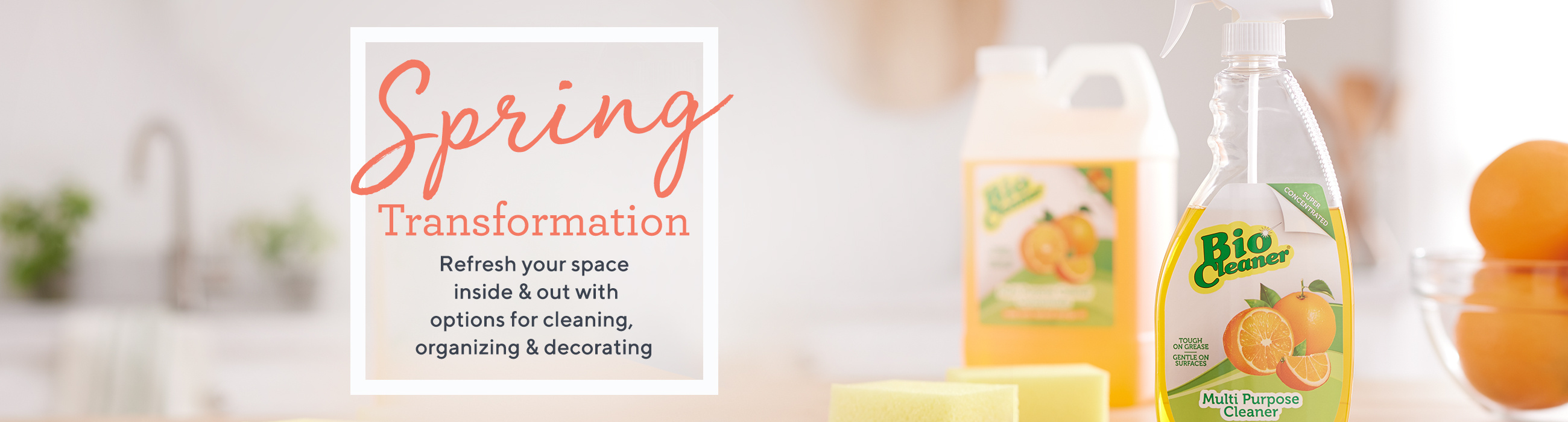 Spring Transformation — Refresh your space inside & out with options for cleaning, organizing & decorating