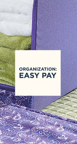 Organization: Easy Pay