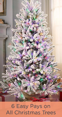 6 Easy Pays on All Christmas Trees