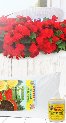 Dünger & Pflanzenpflege