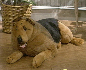 Giant Sized German Shepherd Plush Dog Qvc Com