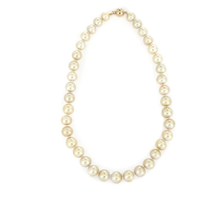 9-12mm South Sea CSW Pearl 45cm Necklace 18ct Gold
