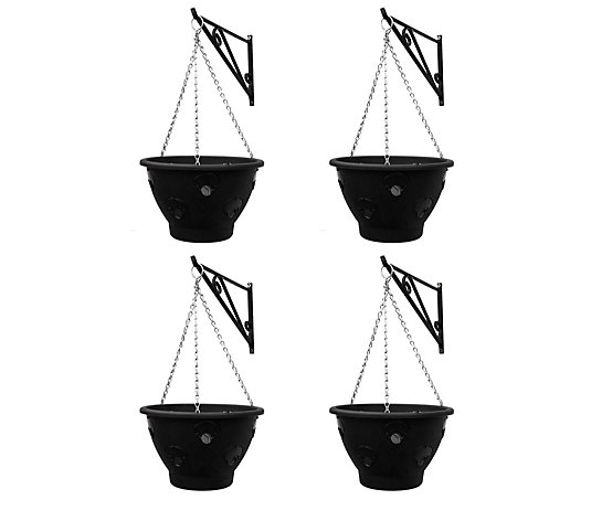 Thompson & Morgan Bloomaround Hanging Basket x4