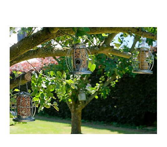 Jennings Set of 3 Mini Lantern Bird Feeders