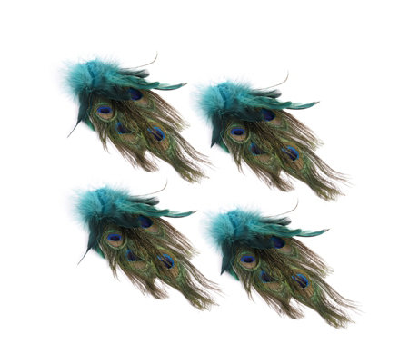 Alison Cork Set of 4 Peacock Feather Clips