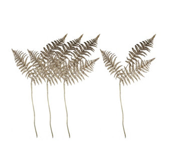 Home Reflections Set of 4 Glittered Fern Stems - 707303