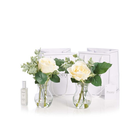 Peony Set of 2 Roses with Foliage & Fragrance Spray in Gift Bag