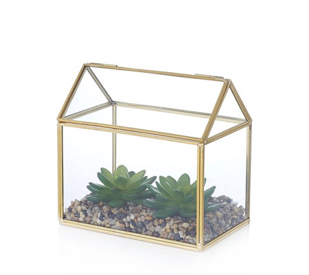 Alison Cork Mini Glass Green House with Succulent Display