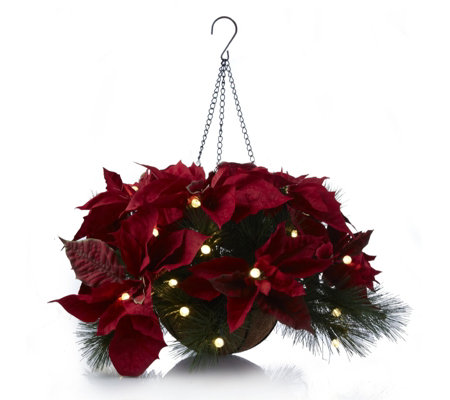 Christmas Hanging Baskets With Lights.Bethlehem Lights Pre Lit Hanging Basket With Poinsettia Faux Flowers Qvc Uk