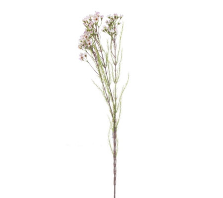 Peony Set of 3 Pink Wax Flower Stems