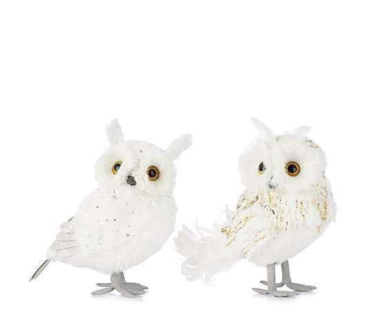 Home Reflections Set of 2 Decorative Owls