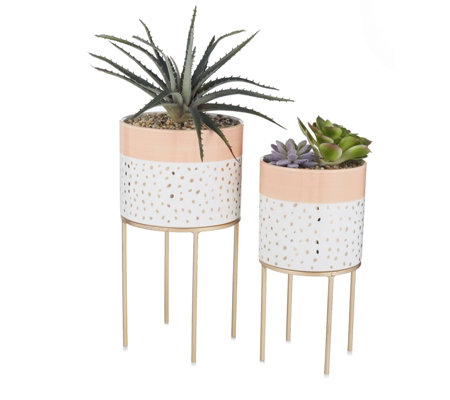 BundleBerry by Amanda Holden Set of 2 Small & Large Succulent Planters & Stand