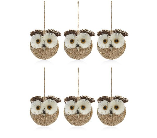 Home Reflections Set of 6 Straw Owl Baubles
