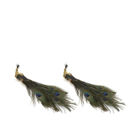 Alison Cork Set of 2 Feather Peacock Clip Decorations