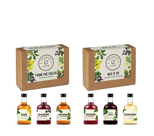 Bramley & Gage Set of 2 Gin Liqueur Gift Sets in Assorted Flavours
