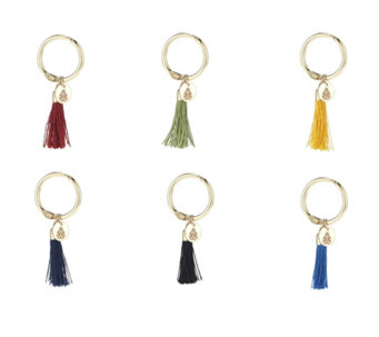 BundleBerry by Amanda Holden Set of 6 Tassel Wine Charms in Gift Box - 806566